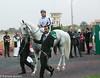 Arabian race - Tallaab Al Khalediah