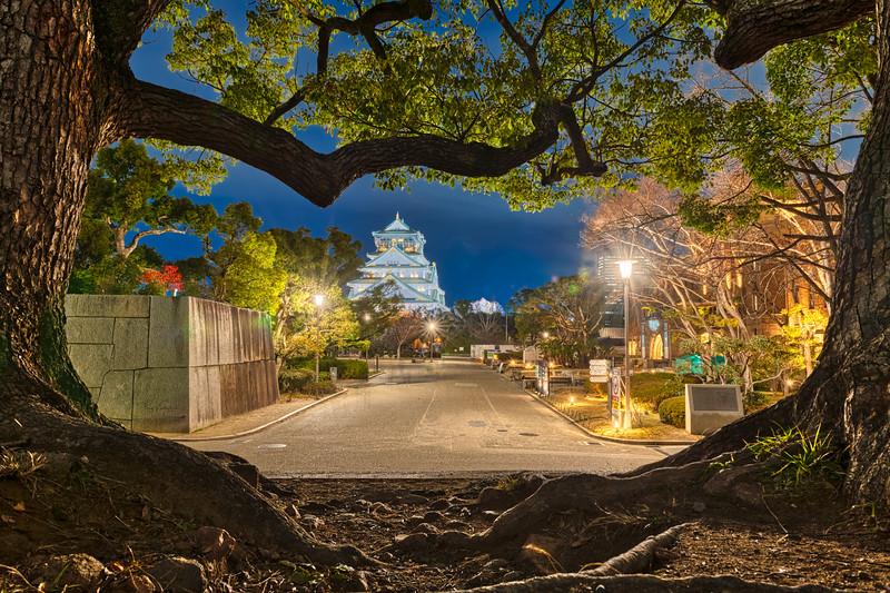 Osaka Castle - Osaka Japan