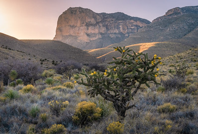 March- Guadalupe Mountains