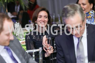 Stephanie Kapsis. Photo by Tony Powell. 10th Annual Teach for America Gala. Ritz Carlton. February 26, 2020