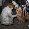 LCC K-9 Comfort Dogs at Milwaukee City Hall community vigil being present for those affected by the Molson Coors-Milwaukee, WI Shooting