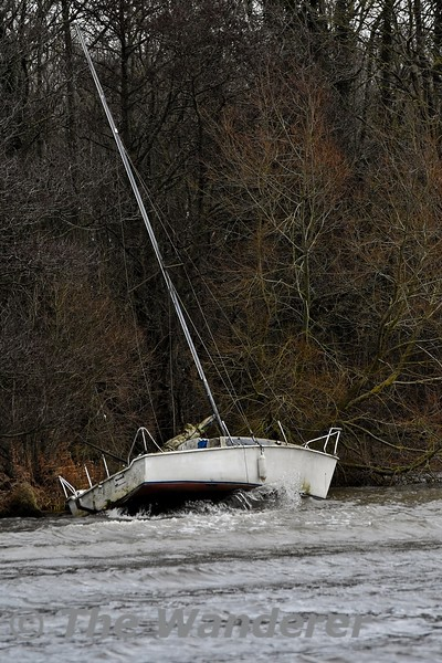 This boat has drifted onto the rocks at Shannonhall in Youghal Bay, Lough Derg. Sun 02.02.20