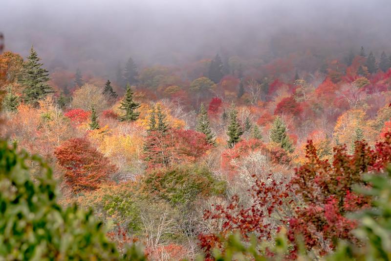 Autumn in the Appalachian Mountains Viewed Along the Blue Ridge Parkwa