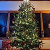 Christmas tree decorated in living room