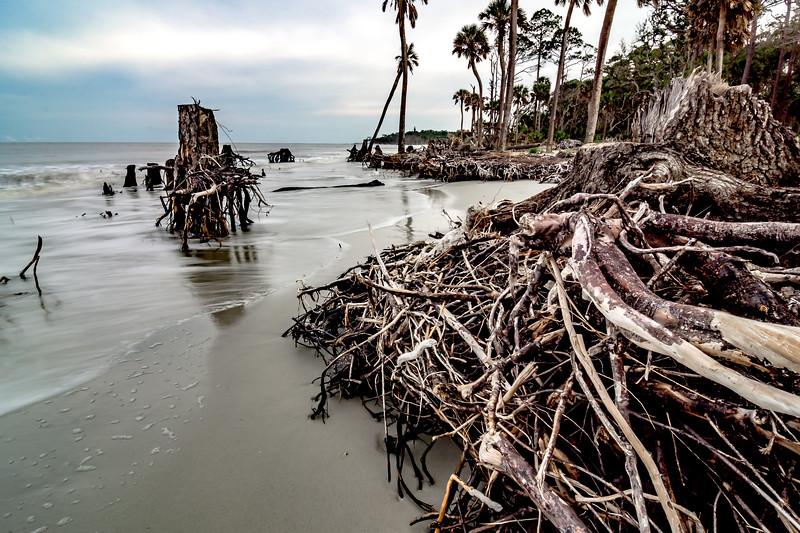 Hunting island south carolina beach scenes