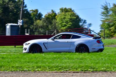 2020 MVPTT MO Nov White Shelby Tint