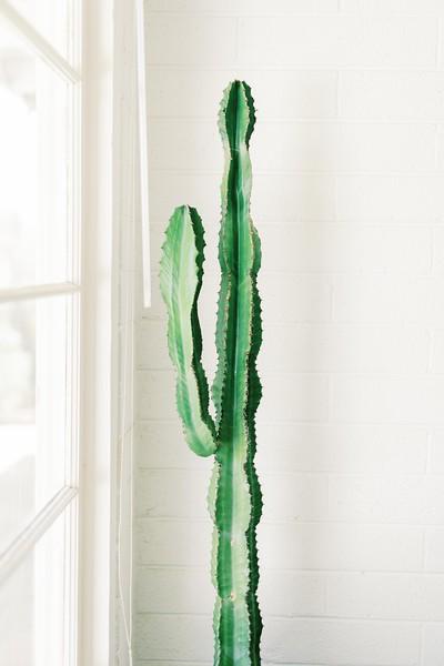 Cactus. At home session - Southern California lifestyle session at a modern, desert, boho home in Joshua Tree - Kristen Krehbiel -Kristen Kay Photography | #athome #travel #cacti
