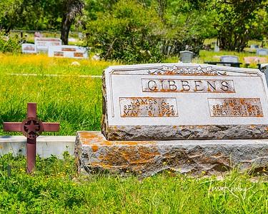 Texas Rangers-James A Gibbens-2603