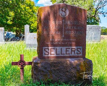 Texas Rangers-James Sellers-2581
