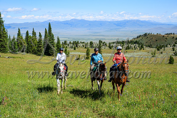 Friday LDs & Trail Riders on Continental Divide