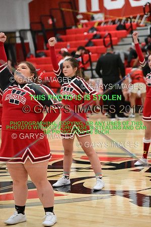 0080WHS V ZT_G_BB CHEER-12182020