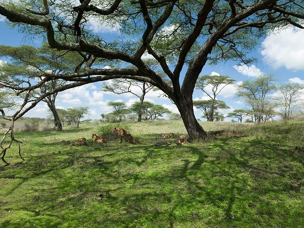 Africa-Kenya--025