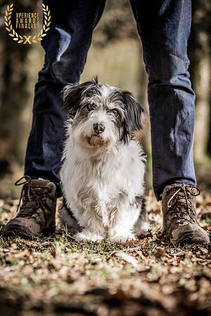 HOUND DOG IMAGES ME AND MY DOG IMAGE 1
