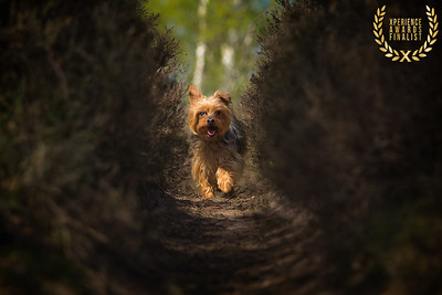 Sally Witney and Titch - Andrew Winter Photography