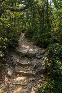 Appalachian Trail near McAfee Knob, Virginia
