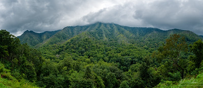 View from Chimney Tops pullout, Newfound Gap, Great Smoky Mountains National Park, Tennessee