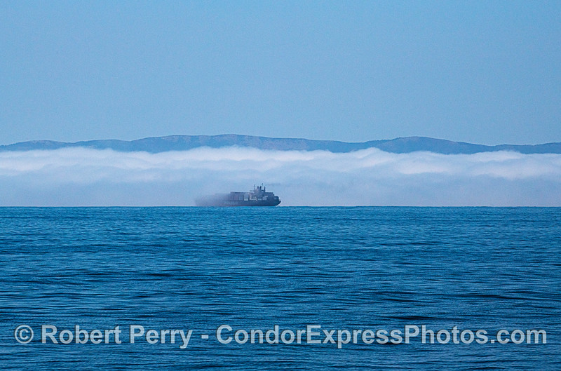 fog & container vessel BIG FILE Pasha Hawaii 2020 06-11 SB Channel-b-010