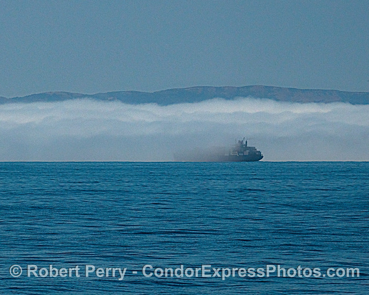 fog & container vessel Pasha Hawaii 2020 06-11 SB Channel-b-022