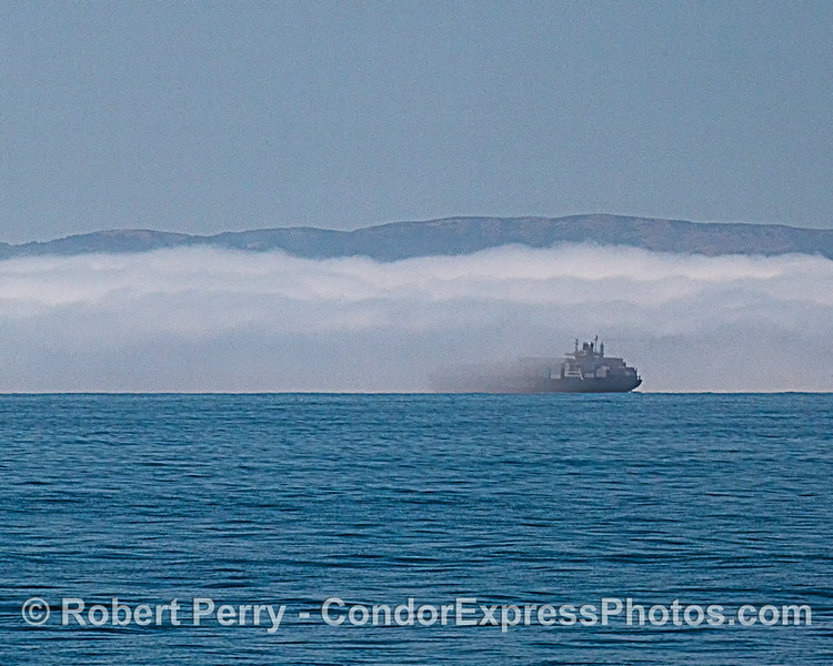 fog & container vessel Pasha Hawaii 2020 06-11 SB Channel-b-014