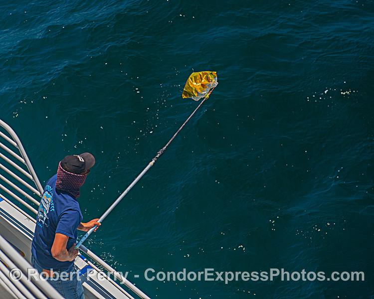 ballon Mylar retrieval deckhand Devin Hunt 2020 06-12 SB Channel-b-013