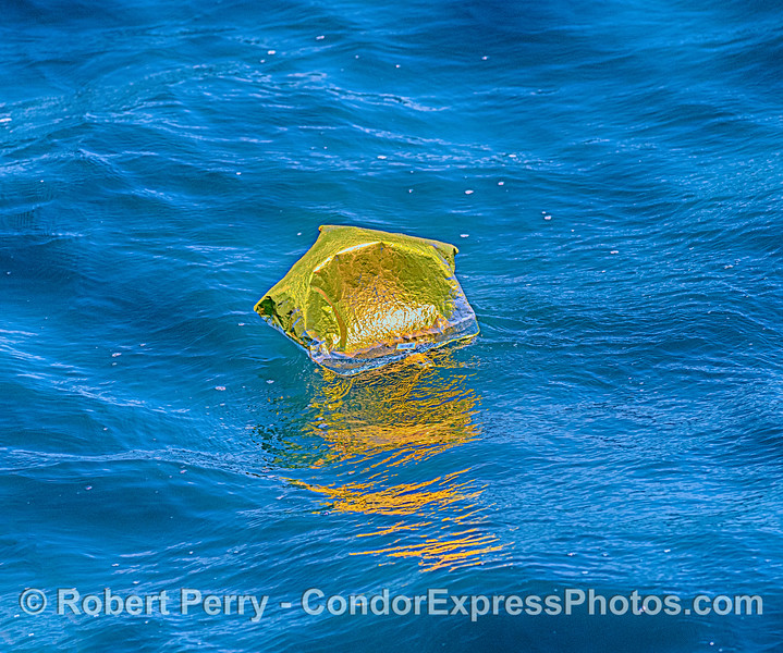balloon Mylar debris 2020 06-12 SB Channel--019
