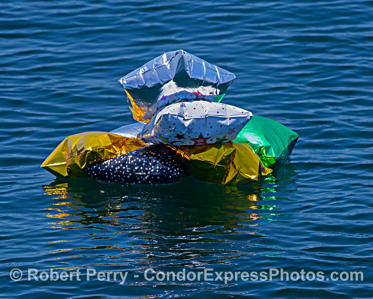 balloon Mylar debris SEVEN 2020 06-15 SB Channel-c-039