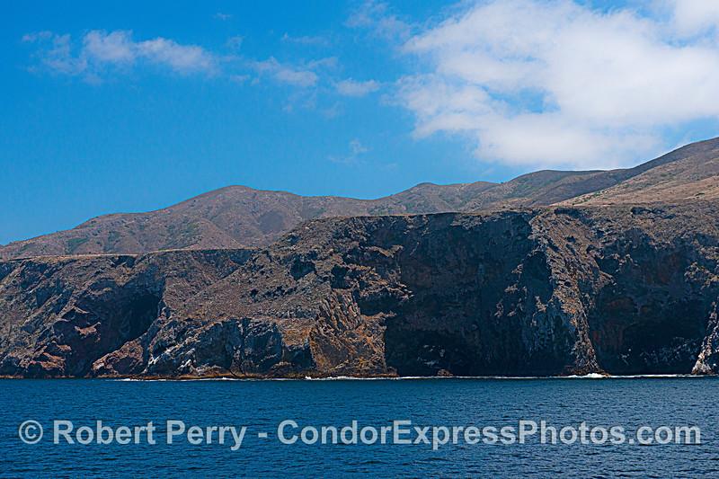 Northwestern sea cliffs - Santa Cruz Island.