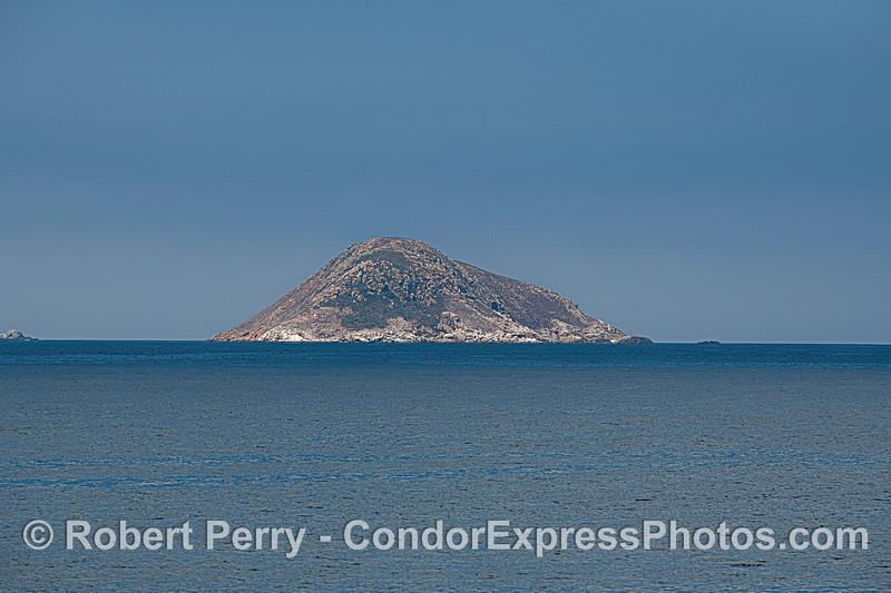 Prince Island - San Miguel Island