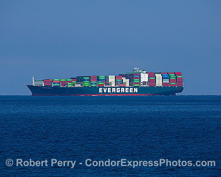 Container cargo ship Ever Smart