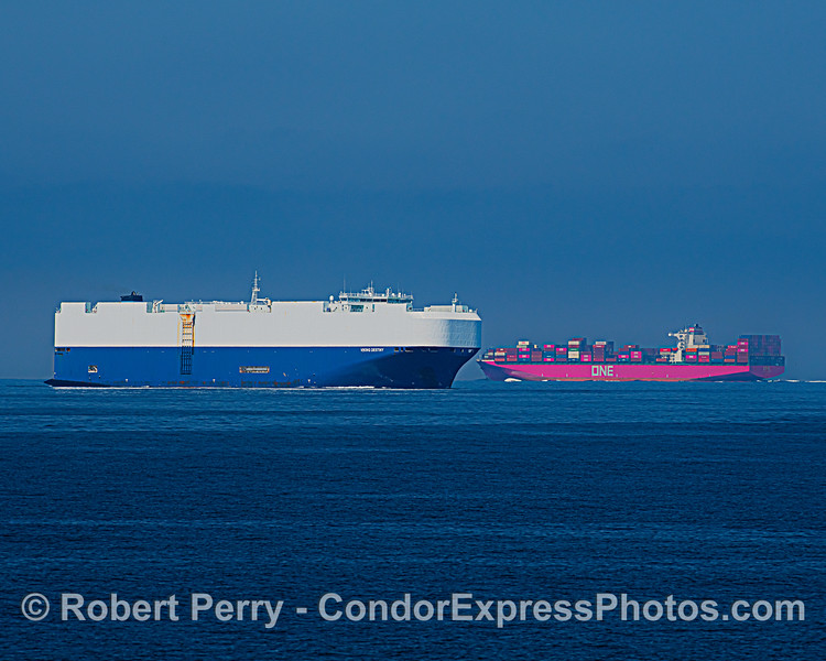 Car carrier Viking Destiny heads south to Port Hueneme while the northbound container ship One Hamburg heads for Okland. This is why we have designated shipping lanes in and out of the Port of Los Angeles/Long Beach.