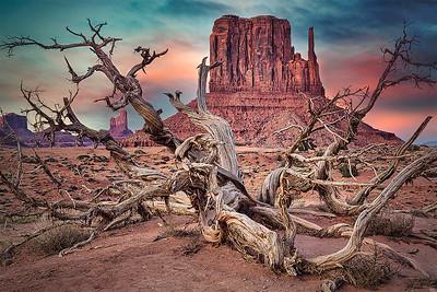 DA115,DT,Monument-Valley-Arizona-USA