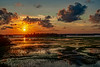 7-30-19 Sunset 30 Marsh
