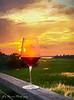 Sunset Cheers!