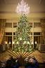 12-22-20 The Sanctuary Tree