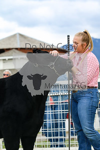montanaag-18