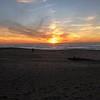 Trip, 8 nights, to Anza Borrego desert park. Also 1.5 days in La Jolla.