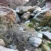 Mambo Jambo: how big are the rocks?