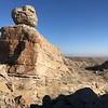 looks like the Sphinx