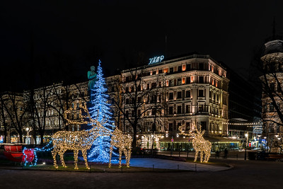Seasonal lights of the Esplanade Park