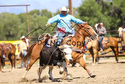 Steer Roping Slack