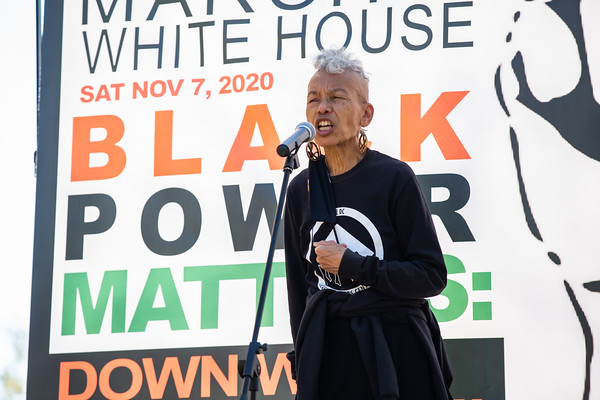 Black People's March on the White House, Rally