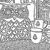 Owl pillow and BMC mugs