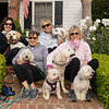Dogs Front Porch-108