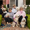 Dogs Front Porch-106