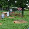 MET 072320 TAF Chickens