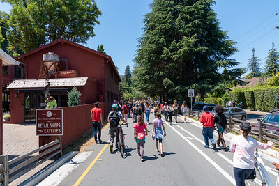 Mill Valley BLM March - June 25 - Steve Disenhof-7754