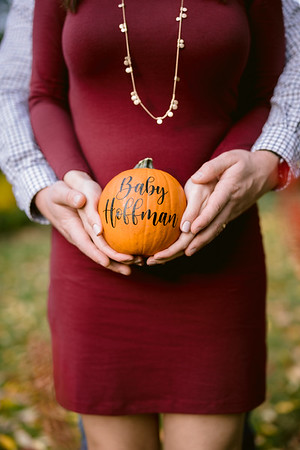 Maternity and Family Photographer Columbus Ohio