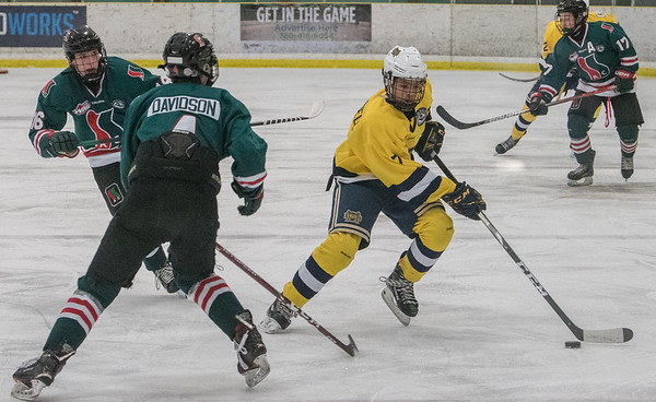 Carmelo Crandell stick handles through the defense during a playoff game between the St. Albert Gregg Distributors Sabres (in yellow) and SSAC Lions (in green) at Jarome Iginla Arena in St. Albert on Sunday Mar. 1, 2020. (JOHN LUCAS/St Albert Gazette)