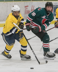 Carmelo Crandell (L) battles with Garrett Thom during a playoff game between the St. Albert Gregg Distributors Sabres (in yellow) and SSAC Lions (in green) at Jarome Iginla Arena in St. Albert on Sunday Mar. 1, 2020. (JOHN LUCAS/St Albert Gazette)