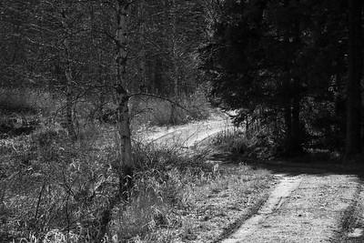 spillersboda_2020-03-13_101011